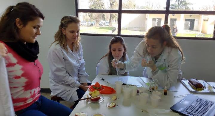Actividad práctica de laboratorio. Cortesía de la Esp. Graciela Raffaini