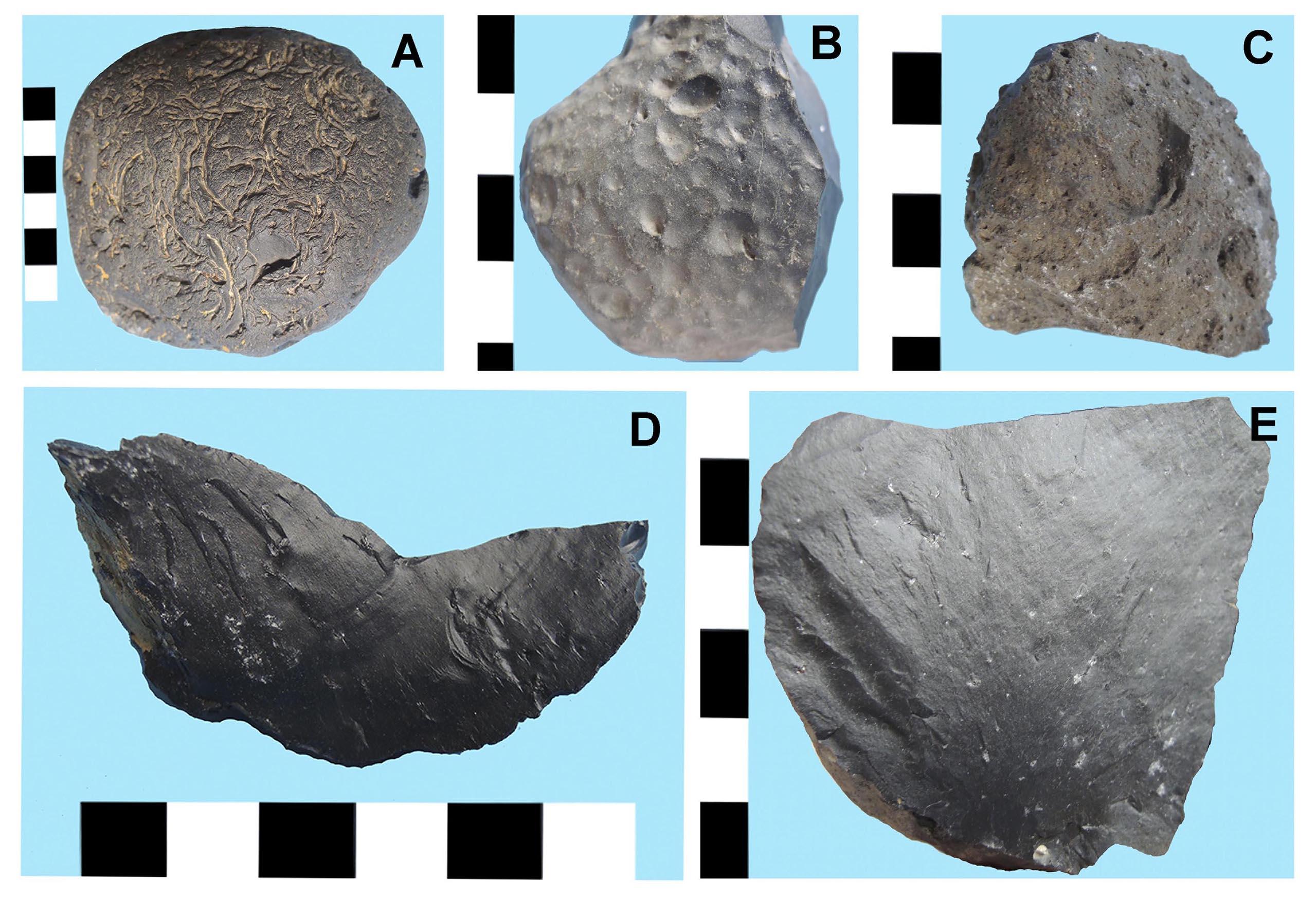Cinco ejemplos de roca de grano fino oscura tipo Potrok Aike